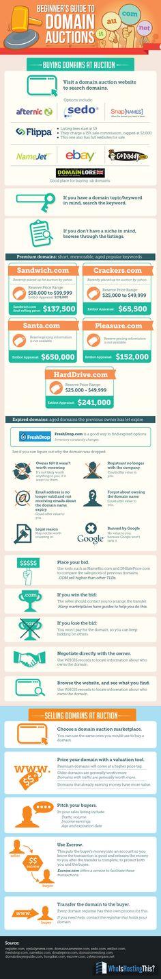 Cómo adquirir el dominio perfecto en una subasta de dominios #infografia #infographic