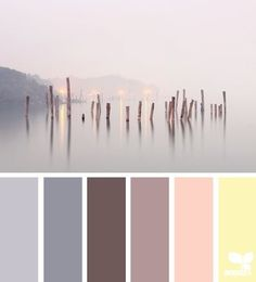 Design Seed- Color scheme for Master Bedroom