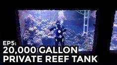 A Proud Man Shows Off His Elaborate Handmade 20,000 Gallon Reef Tank