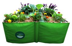 Earth Garden - Instant Raised Bed Garden - Uzwelo Bags in the Other Composting & Garden Waste category for sale in Johannesburg Raised Garden Beds, Raised Beds, Dark Colors, Colours, Earth Bag, Organic Compost, Earthworms, Organic Matter, Kinds Of Music