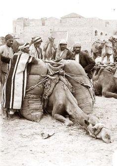 Jerusalem Grain Market 31 Unbelievable Photographs Israel Doesn't Want You To See! Palestine History, Israel History, Israel Palestine, Old Pictures, Old Photos, Vintage Photos, Terre Promise, Plus Que Parfait, Naher Osten