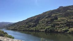 Rio Douro: Portugal.  Douro River: Portugal.