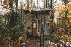 An abandoned tiny cabin I am starting to renovate in Washington State. Source: http://ift.tt/1OSVngS