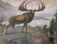 Irish Elk - Charles R. Knight