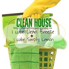 1 cube of Clean Breeze + 1 cube Simply Lemon = that clean house smell that would fake out any guest!