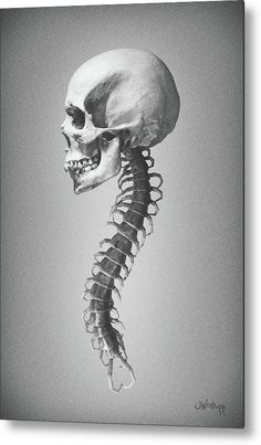 """""""Etiolated Christmas"""" - skull with a centipede spine. Surreal art in black and white, by Joseph Westrupp, bestilled.com. Click the image to buy it printed on metal. Many sizes available, ships within 2 - 3 business days, plus 30 day money-back guarantee."""