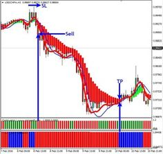 Trader forex for proofing beginner judgement