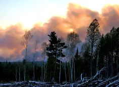 Timmins Fire No. 9 now the largest fire in Ontario, 25,000 Hectares! ~PHOTOS - Timmins Times - Ontario, CA#.T7qxSTb0Z6k.facebook