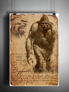 Bigfoot cryptid art, bestiary cryptozoology science journal art, monsters and folklore Mythical Creatures Art, Mythological Creatures, Magical Creatures, Folklore, Bigfoot Pictures, Myths & Monsters, Sea Monsters, Legends And Myths, Field Guide