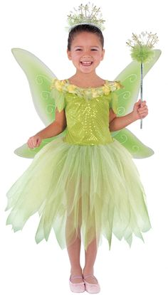 Twinkle Fairy Dress + Wings