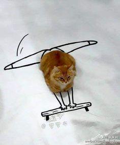 Kitty doodles - Album on Imgur