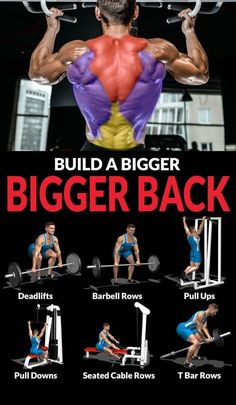 Growing the muscles in your back takes a diligent and disciplined effort. Back workouts should be performed regularly, once or twice a week, with a healthy dose of volume, moderate loads and strict form. The large muscles of the back can move a lot of iro Fitness Workouts, Fitness Gym, Weight Training Workouts, Fitness Routines, Muscle Fitness, Fitness Tips, Gym Workout Chart, Gym Workout Tips, Muscles In Your Back