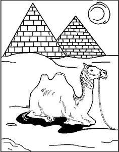 freeanimalscamelprintablecoloringpagesforchild  Camel
