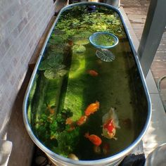 37 Creative Small Fish Pond Design Ideas To Beautify Your Outdoor Decor