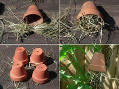 Afbeeldingsresultaat voor insectenhotel lieveheersbeestje