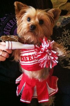 Is this a little Sooner cheerleader ???
