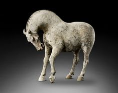 mysleepykisser-with-feelings-hid: Large earthenware horse. Early Tang dynasty…