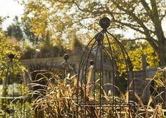 Autumn obelisks