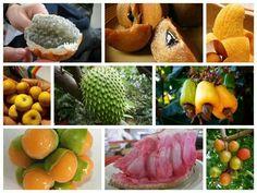 Frutas nicaragüenses