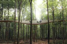 EFFEKT's Spiraling Observation Tower Will Take Visitors 45 Meters Above the Treetops,Image by EFFEKT