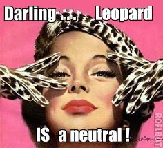 Darling...Leopard IS a neutral! http://stores.ebay.com/NYC-Discount-Diva
