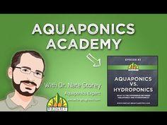 Aquaponics Academy #1: What is Aquaponics? - YouTube