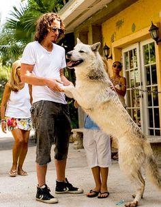 Foto reciente de Chris Cornell junto a su familia en el zoológico de Miami #audioslave @soundgarden sc: @1976_gmail