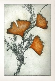 Sharon Parolini ~ California gingko, 2012 (soft ground etching) y aquí me di… Illustration Botanique, Illustration Art, Collagraph, Intaglio Printmaking, Botanical Art, Painting & Drawing, Encaustic Painting, Fiber Art, Graphic Art