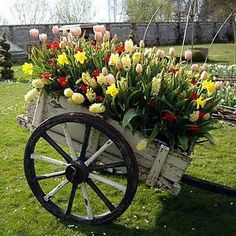 I'd put a flower bed like this in my front yard. Very different than the average front yard flower bed. Maybe in the main flower bed if it will fit! Flower Planters, Garden Planters, Garden Art, Beautiful Gardens, Beautiful Flowers, Wagon Planter, Wheelbarrow Planter, Garden Wagon, Flower Cart