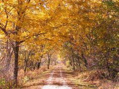 5. Wabash Trace Nature Trail, Western Iowa