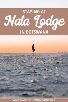 Want to watch thousands of flamingos turn the sky pink? Book a night at Nata Lodge for a unique wildlife experience in Botswana! Chobe National Park, National Parks, National Trust, Africa Destinations, Travel Destinations, Travel Guides, Travel Tips, Travel Advise, Travel Plan
