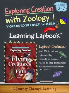 Lapbook for Apologia's Exploring Creation with Zoology 1: Flying Creatures of the Fifth Day. Project is 14 file folders in size and includes built-in lesson plans. #lapbooks #homeschool