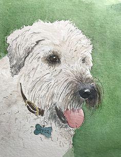Dog portrait, commission. Kipper Dog Portraits, Illustration, Dogs, Pet Dogs, Doggies, Illustrations