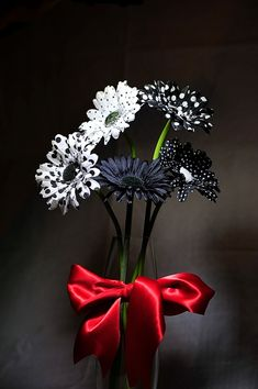 Black n White Black And White Effect, Black And White Colour, Red Black, Op Art, Color Splash, Beautiful Flowers, Flowers Nature, Beautiful Pictures, Fall Displays