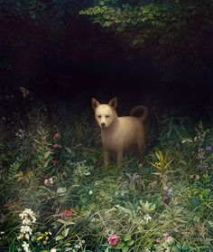 Art by the talented Aron Wiesenfeld on flickr http://www.flickr.com/photos/48947217@N00/with/4132509364/
