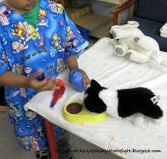 Dramatic Play: Animal Clinic.  http://letsgoflyakiteuptothehighestheight.blogspot.com/2011/06/dramatic-play-animal-clinic.html#