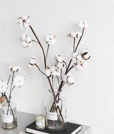 Cotton Flower Stalks, Rustic Artificial Flowers, Cotton Stems, Cotton Stalks, Flower Arrangement – The Best Ideas Silk Flowers, Dried Flowers, Home Flowers, Cotton Stalks, Cotton Decor, Deco Floral, Floral Design, Dream Bathrooms, Home Design