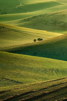 South Downs, England