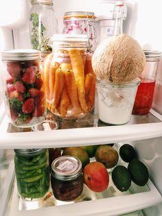 simple low waste fridge