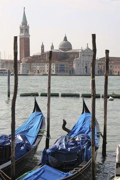 Gondolas, with Basilica di Santa Maria Maggiore in background, Venice