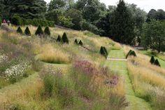 Easton wild garden ; Gardenista