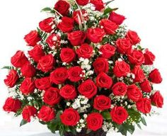 "Three dozen red roses bouquet with traditional style. The best red roses arrangement with love and fragrance. This is called ""Garden of roses. Rosen Arrangements, Red Rose Arrangements, Creative Flower Arrangements, Funeral Flower Arrangements, Funeral Flowers, Cheap Flower Delivery, Rose Delivery, Online Flower Delivery, Same Day Flower Delivery"