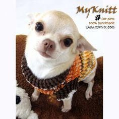 myknitt hand crochet turtle neck dogs sweater #handmade #myknitt #diy #chihuahua #dogs #crochet #unique