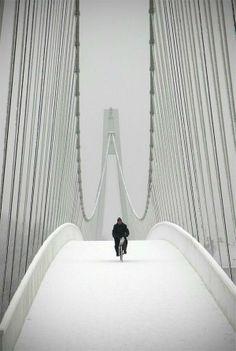 Osijek, Croatia #Puente #Bridge