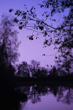 Violet Aesthetic, Dark Purple Aesthetic, Lavender Aesthetic, Aesthetic Colors, Aesthetic Images, Scenery Wallpaper, Aesthetic Pastel Wallpaper, Aesthetic Backgrounds, Aesthetic Wallpapers