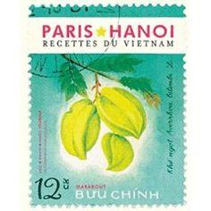 Paris Hanoï - Recettes Traditionnelles & Familiales Vietnamiennes de Mido Youssouf