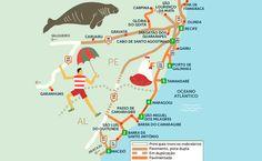 De Maceió a Recife: esqueça o caminho mais curto e passeie pelas belas praias da região