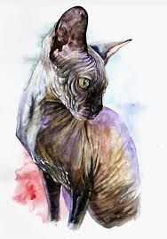 Resultado de imagen de рисунок сфинкса кот