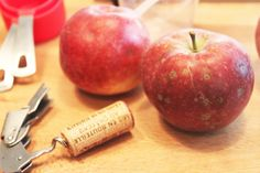 Dot & Lil home notes // fall quebec apples