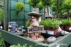 Vida Suculenta: Top 14 Imagens mais vistas, curtidas e compartilhadas na Fanpage do blog no Facebook - Semana IX - 04.07.2013 à 09.07.2013